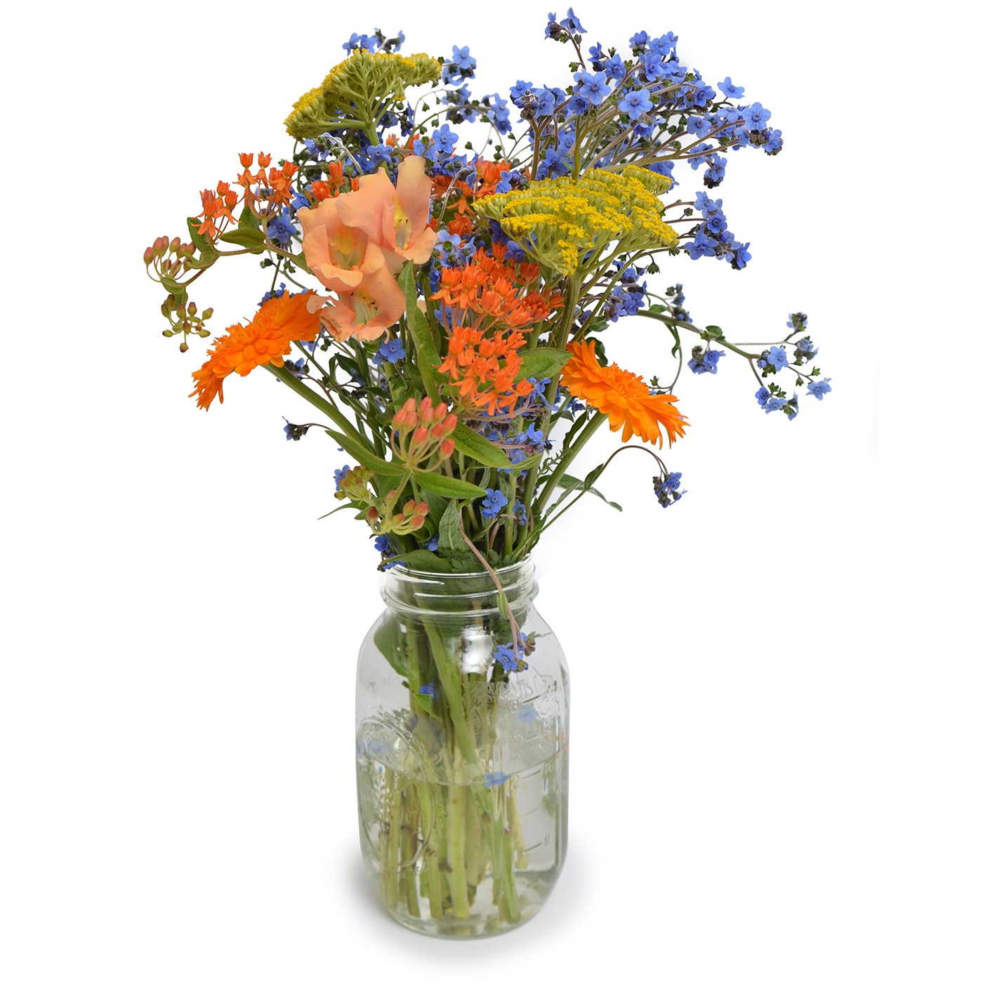 Michigan wild flower bouquets pick up flower catalog michigan wild flower bouquets izmirmasajfo