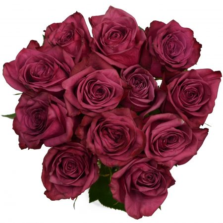 rose blueberry