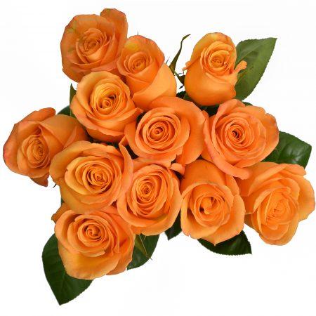 rose confidential rose